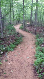 Path to workshop